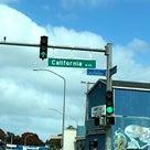コストコで買っておけばよかったと後悔&ワヒアワの道の名前が素敵&この動物は一体何だ?欲しいけど…の記事より