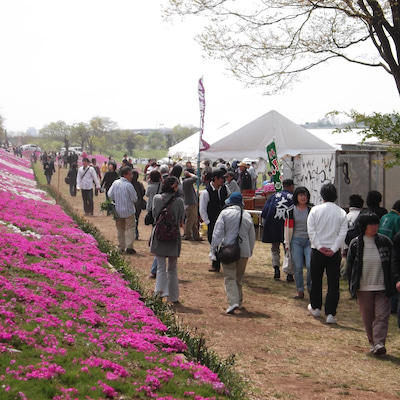 神奈川県のど自慢カラオケ大会 4月7日 相模原市相模原川芝さくら祭り フルコーラの記事に添付されている画像