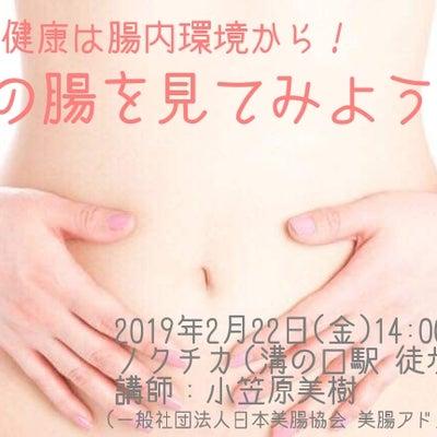 美と健康は腸内環境から!~私の腸を見てみよう~【高津区・溝の口】の記事に添付されている画像
