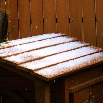 雪の朝の記事に添付されている画像
