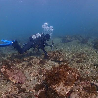 グーグルストリートビューの水中バージョンの撮影業務でスキューバダイビング!和歌山の記事に添付されている画像