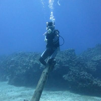 海のブログ!!の記事に添付されている画像