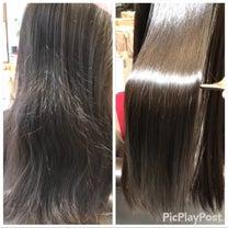 熊本 髪質改善 トリートメントの記事に添付されている画像