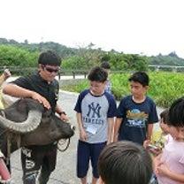 【沖縄英語キャンプアクティビティ】(カヌー&水牛でマングローブ観察体験)の記事に添付されている画像