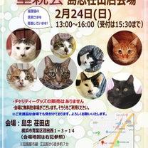 ☆2月里親会のお知らせ☆の記事に添付されている画像