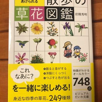 草花図鑑の記事に添付されている画像