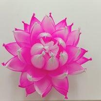 蓮の花のランプレッスンレポの記事に添付されている画像