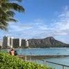 ハワイと日本の親和性の画像