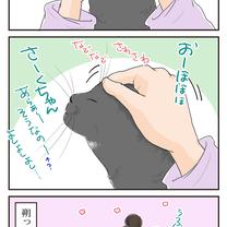 猫の本音の記事に添付されている画像