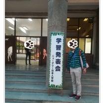 インドニューデリー日本人学校、学習発表会と愛味さんの恵方巻。の、巻。の記事に添付されている画像