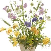 春を感じるアレンジメント*フレッシュフラワーの記事に添付されている画像