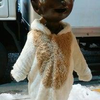 神楽坂のコボちゃん像と今夜のお家ワイン、マナ・バイ・インヴィーヴォ、ニュージーラの記事に添付されている画像
