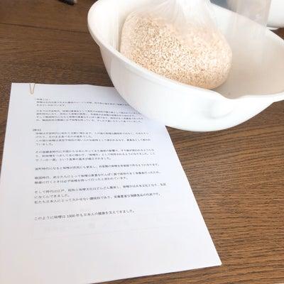 味噌作りは人間と一緒なんじゃない?!!!の記事に添付されている画像