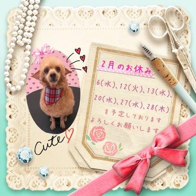 2月のお休み☆彡の記事に添付されている画像