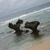 沖縄に行って来ました♪の画像
