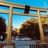 相澤  ꒰⑅́・(ꀾ)・ ̀⑅꒱の画像