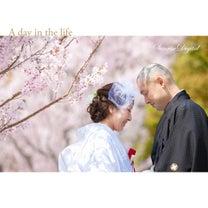 桜 徳川園 和装ロケーション前撮り名古屋サンライズデジタルの記事に添付されている画像