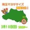 3月、埼玉マヨササイズ開催いたします!の画像