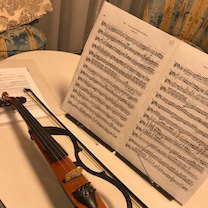 ヤマハ♪サイレントバイオリンの記事に添付されている画像