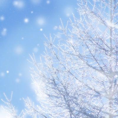 明日は東京でも雪予報!雪遊びと雪のベビーサインを楽しもう♪の記事に添付されている画像