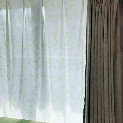 運気アップのカーテン選び☆の記事に添付されている画像