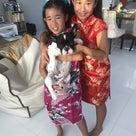 タイとマレーシアのチャイニーズニューイヤー(旧正月)の違いの記事より