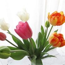 春を感じるチューリップの記事に添付されている画像