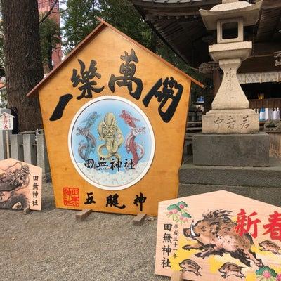 田無神社・・・パワーを感じられれば御利益が分かり、神社仏閣参拝はもっと楽しくなりの記事に添付されている画像