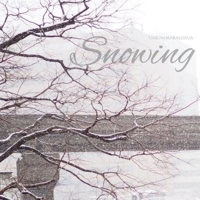 フラ   雪の日の幸せの記事に添付されている画像