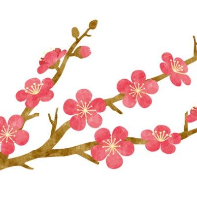 高知県内の梅・桜の綺麗なところ(随時更新)の記事に添付されている画像