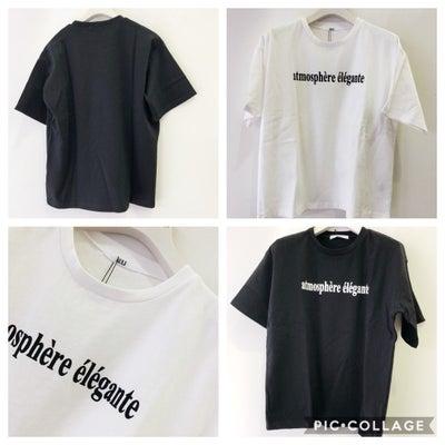 こんなに寒いのに シンプルロゴTシャツ人気でした!の記事に添付されている画像