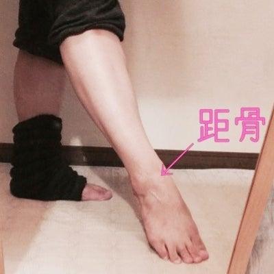 足の構造を考える② 距骨の記事に添付されている画像