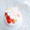 Sweet Sweet Festival♡予約制レッスン『ガトーブラン』のご紹介ですの画像