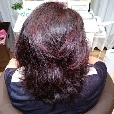 白髪染めでかぶれてしまう方・髪のうねりが氣になる方への記事に添付されている画像