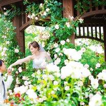 サンライズデジタル 洋装ロケーションフォト 薔薇園の記事に添付されている画像