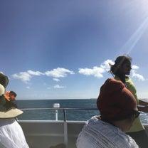 グリーン島っての記事に添付されている画像
