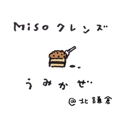 Misoクレンズプライベートプログラムの記事に添付されている画像