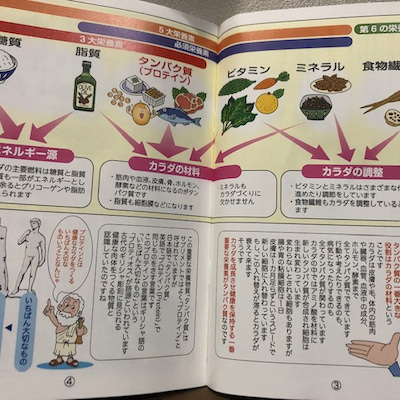 プロテイン新商品!の記事に添付されている画像