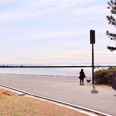 ロン散歩  葛西臨海公園編  後編の記事に添付されている画像
