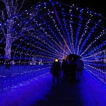 やまがた冬のイベント1☆第4回やまがた雪フェスティバル☆の記事に添付されている画像