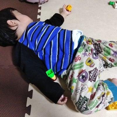 お昼寝の記事に添付されている画像