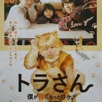トラさん~僕が猫になったワケ~の記事に添付されている画像