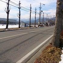大町から松本へ(^_-)の記事に添付されている画像