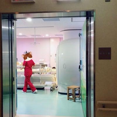 二分脊椎経過観察の記事に添付されている画像