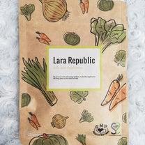 Lara Republic 葉酸サプリメント【I-ne】の記事に添付されている画像