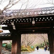 そうだ京都へ行こうの記事に添付されている画像