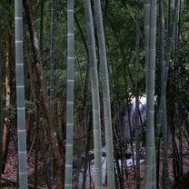 日帰り旅行☆天橋立へ行ってきました②の記事に添付されている画像