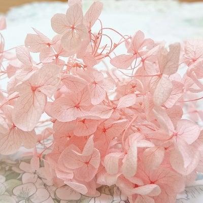 お花を雑貨用にコーティングするには、強度が重要!【スキルアップ講座・上級】の記事に添付されている画像