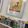 福岡県女性議員ネットワーク研修会の画像