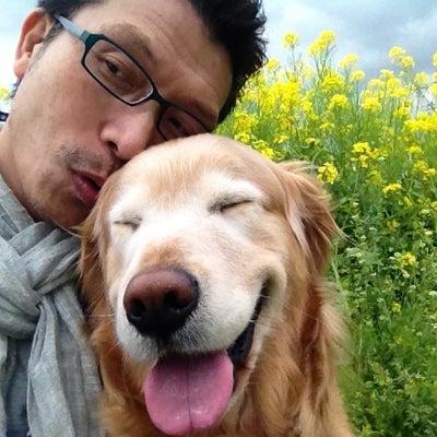 僕のワン(犬)ダフル・ライフの記事に添付されている画像
